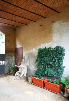 2 IMG_4028_impresa_pelligro